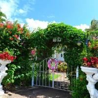 オアフ島/ダイヤモンドヘッド・アネラ・ガーデン・チャペル