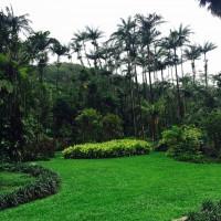 オアフ島/マノアラニ ガーデン ウェディング