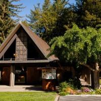 アメリカ/サンフランシスコ/森の教会