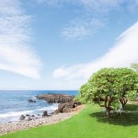 マウイ島/ダブルツリー・エステート