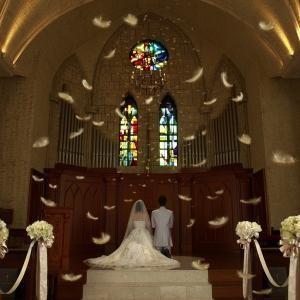 【口コミで人気の大聖堂】ドレスが映える☆チャペル体験フェア