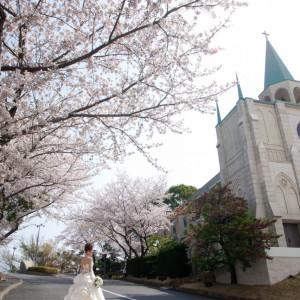 岡山国際ホテルの写真(964371)