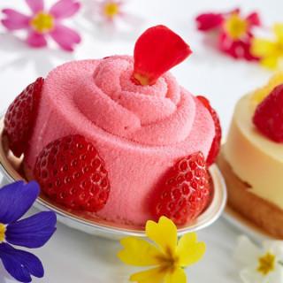 【平日限定】ティーケーキ付少人数パーティー相談会