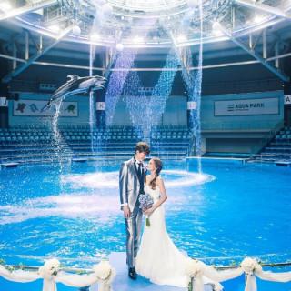 【VR体験が出来る】大人気の水族館ウエディング相談会