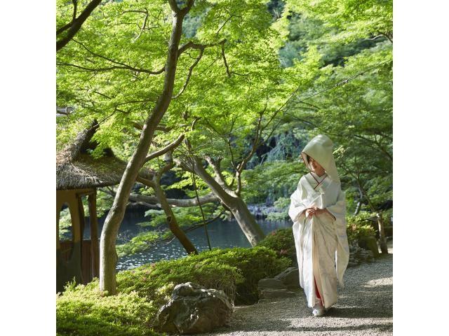 江戸時代からつづく約1万坪の日本庭園を散策!