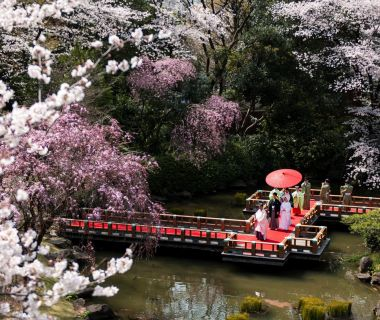 雅楽の音色が響き渡る庭園から、神職に導かれて行列で進む「庭参進の儀」。
