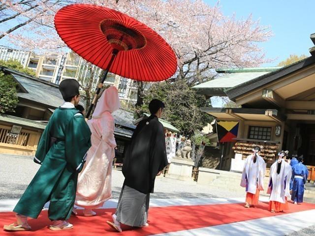 東郷神社本殿見学
