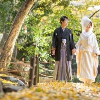 【組数限定】庭園散策×選べる和装試着体験プレミアムフェア