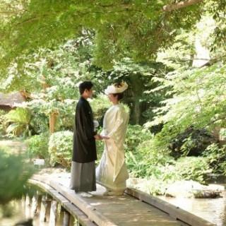 お急ぎOK!日本庭園×本格料理でしっかり婚