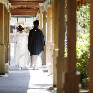 大井神社 宮美殿の写真(3526101)