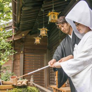 大井神社ならではの「水あわせの儀」|大井神社 宮美殿の写真(2642126)