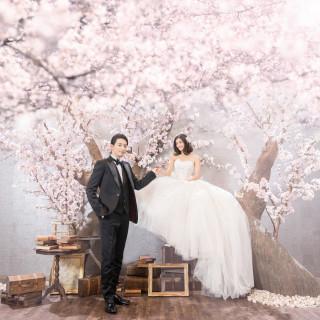 【来年春!桜満開の浅間大社で】和婚をご希望の方に!