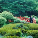 400余年の歴史を誇る、緑豊かな日本庭園にて絆と情緒溢れる人前式が叶う。