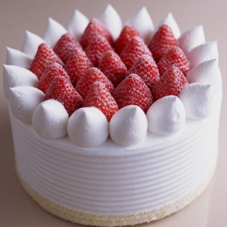 【1日限定20食】幻のショートケーキ試食&豪華特典付相談会