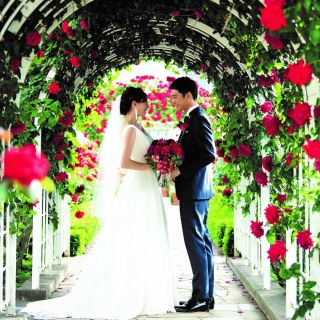 【アットホーム婚の方へ】無料試食&選べる特典付き相談フェア