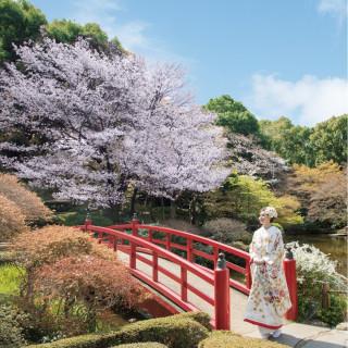 【特製オータニケーキ試食付】日本庭園×本格おもてなし相談会