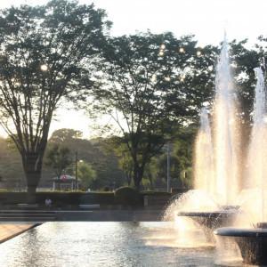 都心でありながら噴水の水に親しみ、豊かな緑を楽しめる贅沢なロケーションを楽しめます。|和田倉噴水公園レストラン (パレスホテル直営)の写真(1293717)