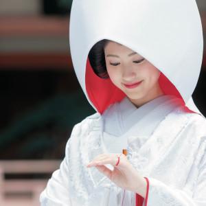【重要文化財の神社で神前挙式体験!】神職の解説付きで初めてでも安心♪