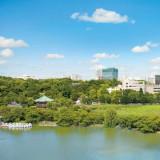 館内からは上野公園の緑を望む