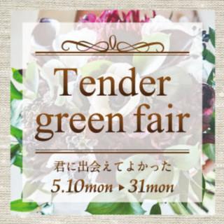 君に出会えてよかった Tender green fair