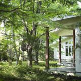 森に囲まれた会場でゆったりとしたリゾートウェディングはいかがですか?