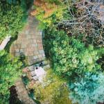【満足度No1】BIGフェア!婚礼フレンチコース&森のリゾートW体験