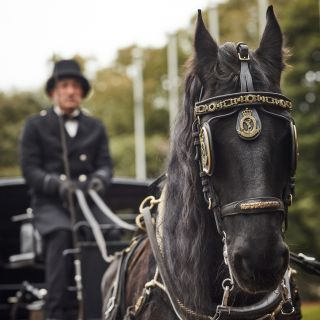 【馬車に乗りたい!】ホースパレード体験★スイーツ付フェア