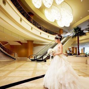 【初見学に大人気!】豪華特典付きで結婚式への不安解消フェア
