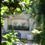 ガーデンには素敵な撮影スポットが沢山あるのも魅力。