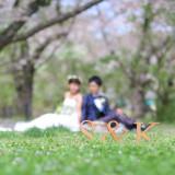 京都市植物園での洋装ロケーション前撮り。
