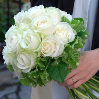 ✿花の金曜日✿~ハナキンにかけて・・フラワープレゼントしちゃう見学会~