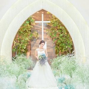 """""""光の教会""""模擬挙式×豪華コース試食×結婚式まるごと体験☆"""