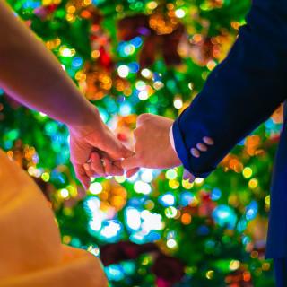 このシーズン限定のクリスマスツリーをご用意しております