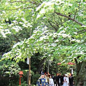 参進風景(新緑) 冠稲荷神社 宮の森迎賓館 ティアラグリーンパレスの写真(267793)