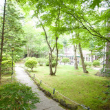 中庭にある森の小径は、小鳥のさえずりと木々のせせらぎ、そして時折リスが戯れる、癒しの空間です。
