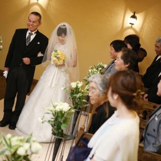 【ドレスもしっかりチェック!!】お急ぎ婚フェア♥