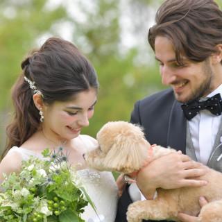 【大好きな愛犬もチャペル内OK!】Dog Wedding相談会