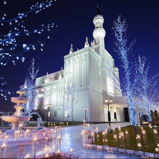 ローズガーデン/ロイヤルグレース大聖堂