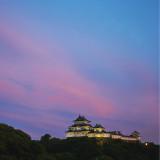 美景を身近に感じられるウエディング。夕方~夜のライトアップも美しい和歌山城が見られます。