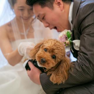 【ペットと結婚式】~大切な家族と共に~