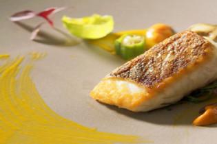 こだわりの料理でおもてなし アクアテラス迎賓館(新横浜)の写真(2471871)