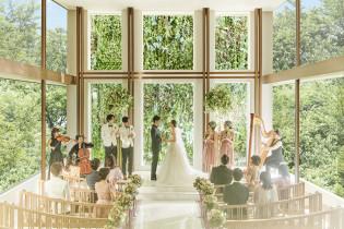《緑×光×木》が奏でる自然空間 アクアテラス迎賓館(新横浜)の写真(4340963)