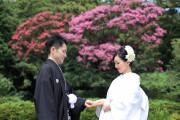 鶴岡八幡宮(チアーズブライダルプロデュース)