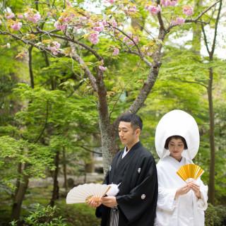 *鶴岡八幡宮神前結婚式*土日祝開催ご相談会@横浜サロン【15:00~】