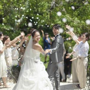【全館貸切BIGフェア】結婚式がイチからわかる!豪華試食付♪