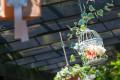 貝殻亭リゾート&ガーデン
