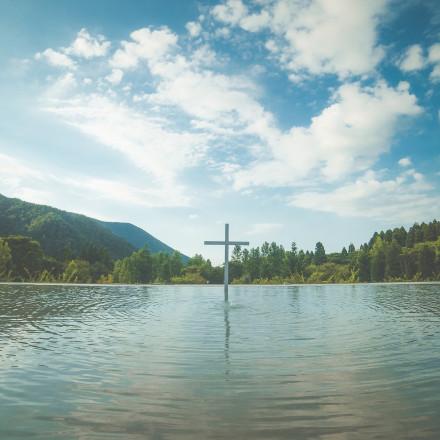 プリムローズガーデン 森と水の教会