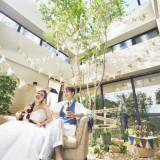 2つの披露宴会場のガーデンには、陽の光が入る大きな天窓と、シンボルツリーが植えられています。緑あふれるインドアガーデンは天気・季節を問わず、快適にお過ごしいただけます*