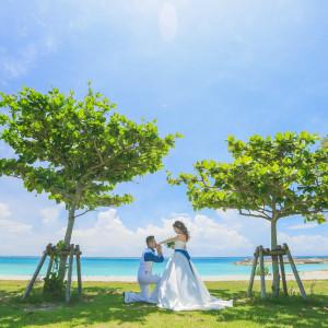 シー シェル ブルー/サザンビーチホテル&リゾート●小さな結婚式の写真(1302413)