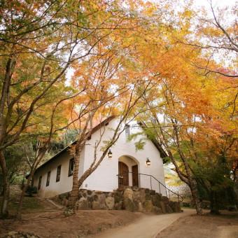 森の邸宅彩音